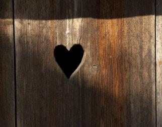 Hjerte i dør