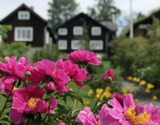 Blomster foran hjemmet til Sigrid Undset